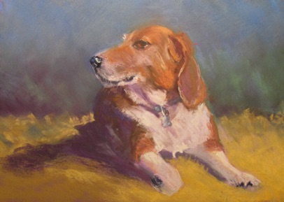 Dog Portrait Example Pastel