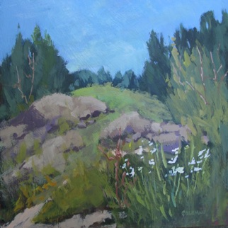 Monhegan Meadow Acrylic 10x13