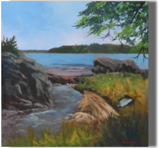 Visit to a Small Island 20x20 - $450 - Gallery Witch Island, South Bristol, ME Exploring a special place by boat