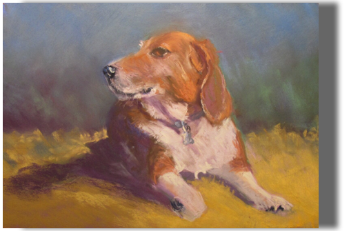 Pet Portrait Example 11x17 pastel on paper Portrait done from owner's photographs
